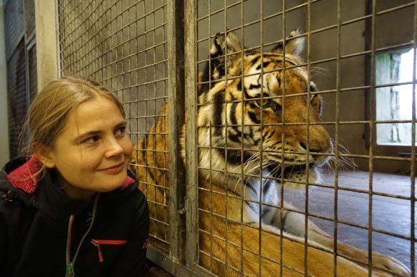 kõnelusi tiigriga